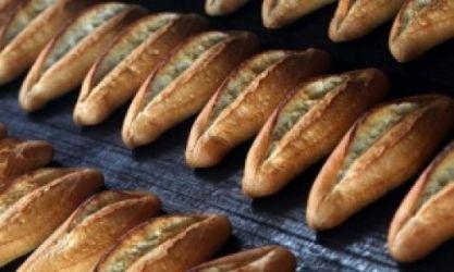 Atık ekmekler hayvanlar için toplanacak