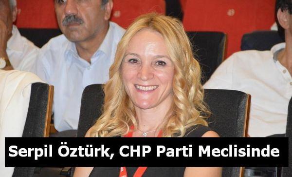 Serpil Öztürk, CHP Parti Meclisinde