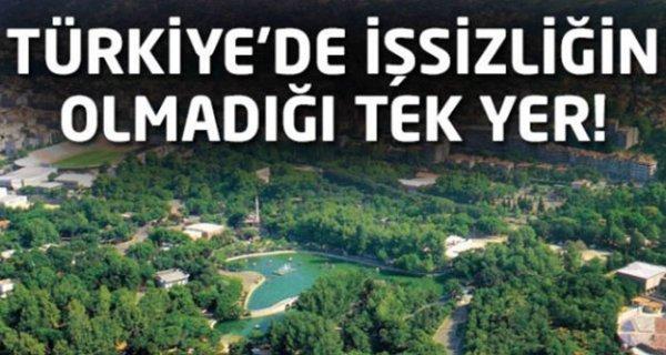 Türkiye'de işsizliğin olmadığı tek yer !