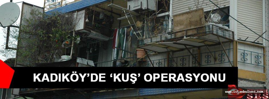 Kadıköy'de kuş operasyonu