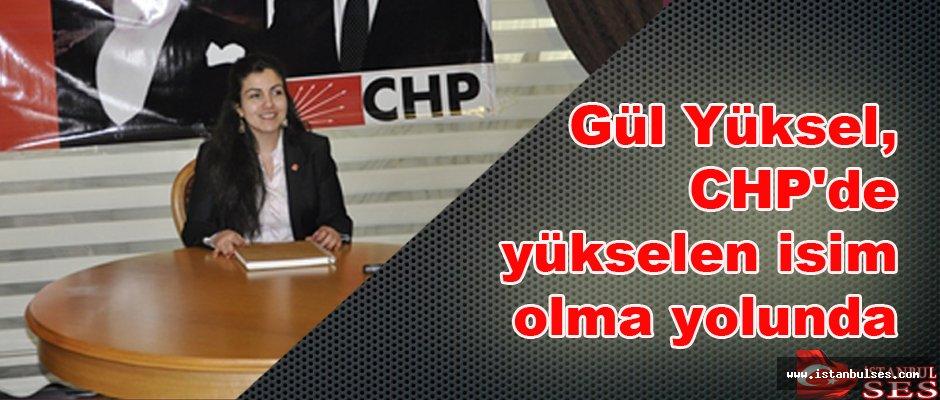 Gül Yüksel, CHP'de yükselen isim olma yolunda