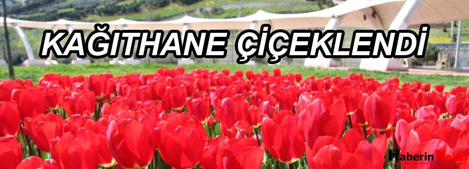 Kağıthane'ye 800 Bin Çiçek
