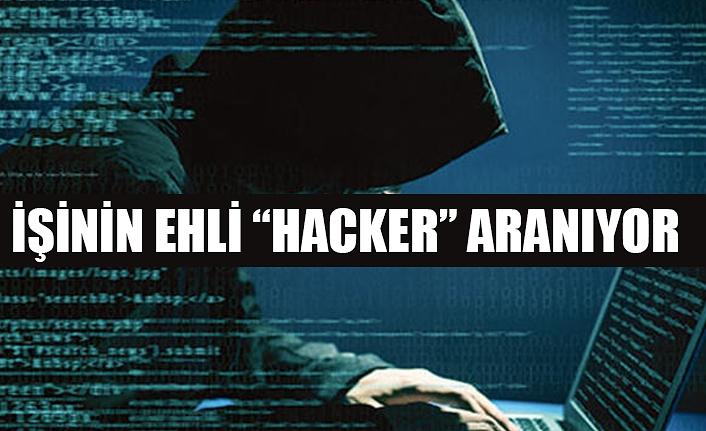 İşinin Ehli Hacker Aranıyor