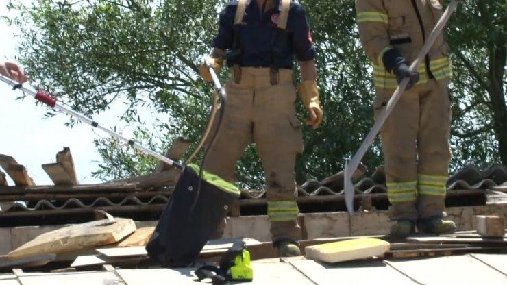 Sultangazi'de evin çatı boşluğuna giren yılan doğaya salındı