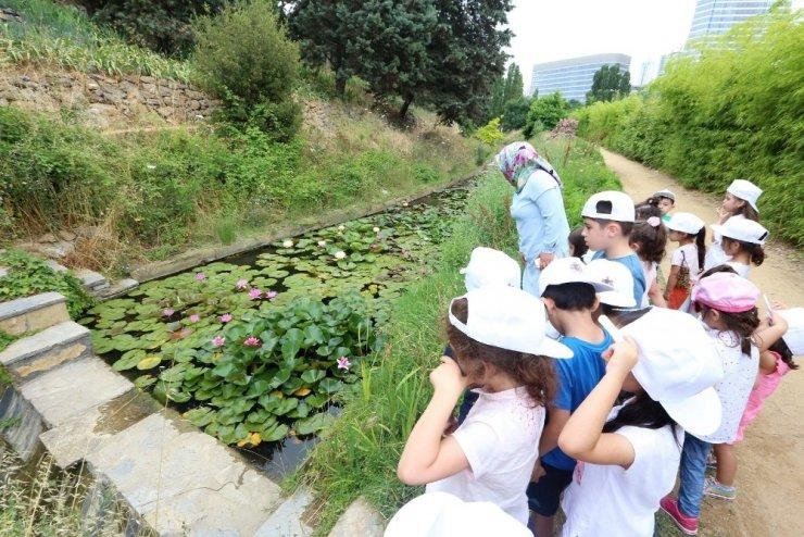 Minik dedektifler botanik bahçesinde keşfe çıktı