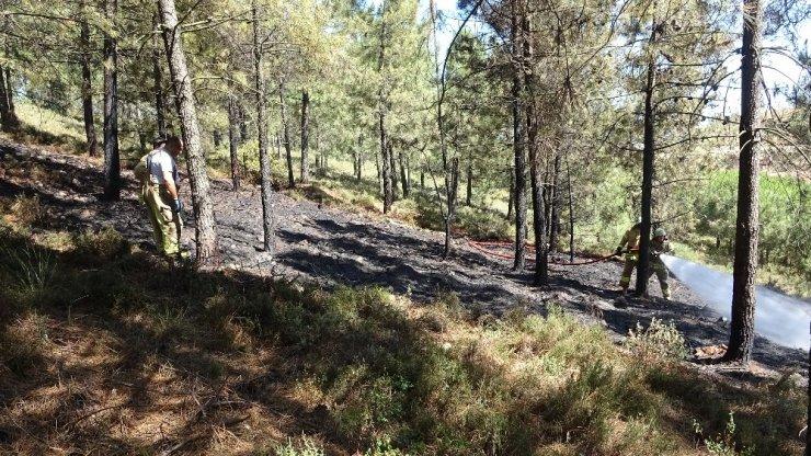 Tuzla'da ormanlık alanda yangın paniği